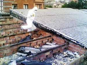Paneles termosolares tejados y fachadas singulares for Tejados de uralita riesgos